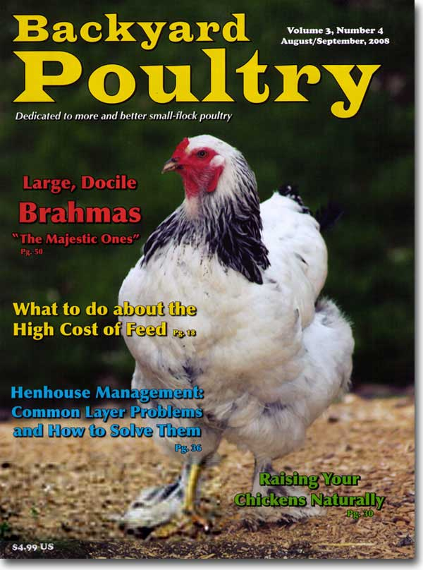 of brahma chicken is used on the cover of backyard poultry magazine